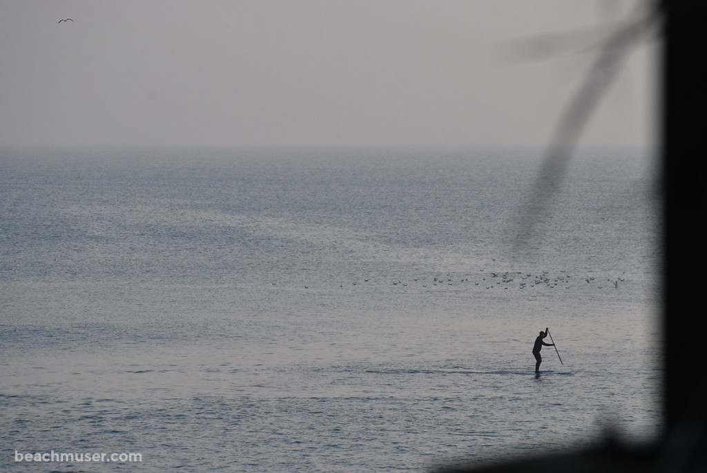 Porthleven Sea Standing Up Paddleboarding