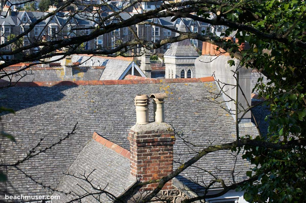 St Ives Roof Tops and Chimney Framed by Nature