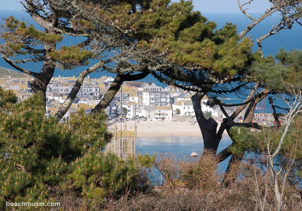 St Ives Harbour Framed by Nature