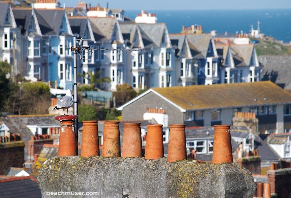 A seagulls chimney top view of St Ives